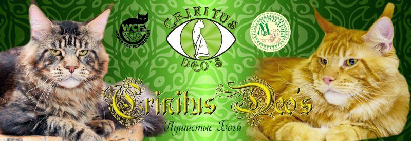 CRINITUS DEO`S