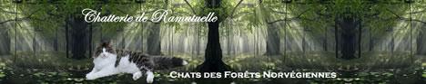chatterie de Ramatuelle