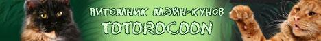 Totorocoon