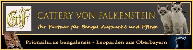 von Falkenstein